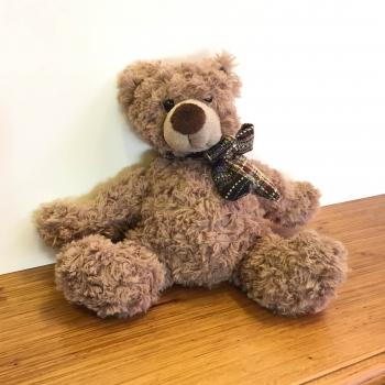 Teddybär Torben